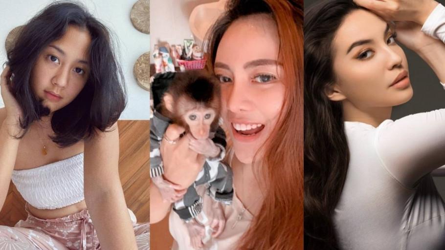 Dikritik Manohara dan Sherina Munaf, Pemilik Monyet Baim Buka Suara